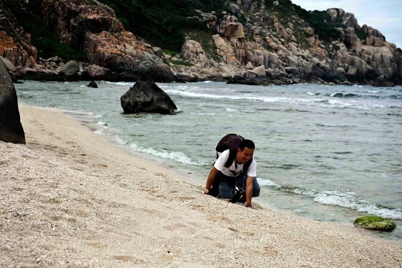 bãi biển vịnh vân phong